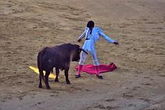 What bullfighters think? (Toto Olmos) Tags: torero bullfighther bull plaza de toros corrida bullring toreador