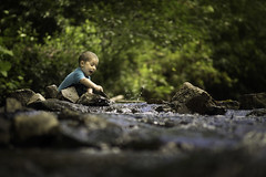 Fun in the Creek (Phillip Haumesser Photography) Tags: boy kid child fun park water creek playing play philliphaumesser