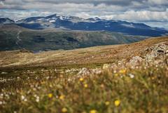 Jotunheimen, Norway (Karol Majewski) Tags: jotunheimen norwa norge norwegia landscape nature krajobraz natura gry mountains fjellet slope stok oppland vg wander wanderlust gjendesheim maurvangen sjodalen styggeh valley dolina clouds chmury