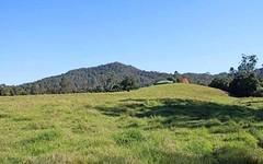 448 Hickeys Creek Road, Millbank NSW