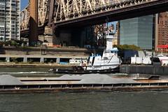 Tugboat & Barges 1 (Roosevelt Island/NYC) (chedpics) Tags: newyork eastriver rooseveltisland tugboat
