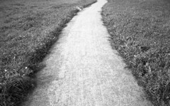 Road (Nils Kristofer Gustafsson) Tags: blackandwhite bnw ishootfilm retro rollei 400s lomo lomography sweden rebro keepfilmalive filmisnotdead filmphotography film rodina adonal yashica electro cc 35mm