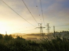 Rise and shine. (tkaiponen) Tags: sunrise fog mist trees forest glow powerlines