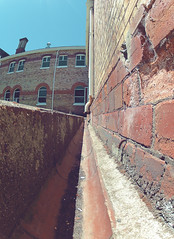 brick (sammwidge) Tags: old brick buildings walk wide wideangle fisheye auckland gutter unitec perspectiv ptchev gopro oldhospital