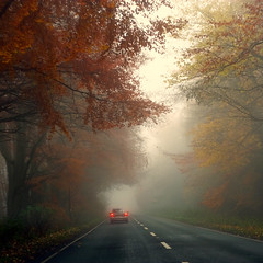 Drive (Andrew Lockie) Tags: road autumn england fall fog square drive highway day colours fuji scenic cotswolds route stowonthewold escarpment xe1 explored3