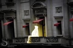 Festive NY Cartier cat-7332 (Singing With Light) Tags: city nyc november ny festive photography pentax manhattan 2012 k5 jjp singingwithlight