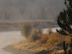 Grand Teton National Park-WY-Oxbow Bend Pullout at dawn (60) (moelynphotos) Tags: autumn mist mountains fall nature water colors landscape dawn nationalpark scenery wyoming grandtetonnationalpark moelynphotos dirtcheapphototour oxbowpullout