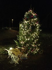 White Bluff UMC Tree of Light (peachy92) Tags: christmas usa church ga moblog georgia us unitedstates unitedstatesofamerica churches christmastree chatham moblogging savannah christianity methodist christmastrees methodism 2012 savannahga unitedmethodistchurch iphone chathamcounty umc savannahgeorgia chathamcountygeorgia iphonegraphy chathamcountyga iphoneography iphone4s christmas2012 whitebluffunitedmethodistchurch