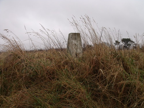 Trig point, Muirheads Reservoir, Tayside (NO606443, OS Landranger 54), 22nd December, 2012