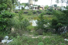 Temple tank (Raju's Temple Visits) Tags: thiru arisili