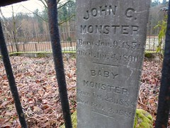 Baby Monster (QsySue) Tags: grave graveyard digital lumix kent headstone graves panasonic gravestone pointandshoot digitalcamera pioneers washingtonstate pioneercemetery babymonster digitalpointandshoot southkingcounty petersaarcemetery panasoniclumixdmczs8 johncmonster