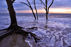 The Boneyard (Jeka World Photography) Tags: ocean trees sunset sea sky usa cloud sunlight tree nature water horizontal sunrise outdoors photography coast oak tide horizon southcarolina wave nopeople atlantic botanybay boneyard baretree scenics seafoam waterscape tranquilscene colorimage jekaworldphotography jeffrosephotography