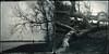 after the storm (biancavanderwerf) Tags: wood winter two bw brown man blur tree fall dutch square landscape person mono diptych bianca dreamcatcher takken iphone