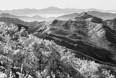 Deogyusan ridge _JGS (withcamera) Tags: morning flowers autumn trees winter summer sky people plants snow abstract mountains nature rain collage fog clouds canon landscapes spring nikon pattern wind sony religion digitalart lakes cities insects panasonic rivers montage wildflowers tradition forests configuration seas fishingvillages ruralareas andvalleys gogeonchuk