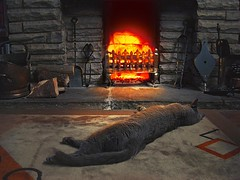 Cat enjoying the fire (Rich Saunders) Tags: winter sleeping hot cat fur relax fire grate fireplace feline warm glow sleep warmth heat rug glowing paws comfort puss pusscat realfire