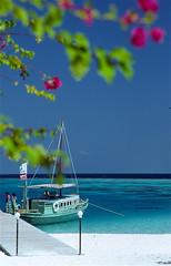 Arrived in paradise - Ihuru - Maldives 1988 (Time Travel) Ektachrome 64 scanned (fxdx) Tags: sea beach boat warm paradise maldives maledives ihuru