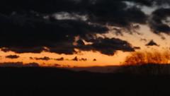 A windy winter evening (D. Moreno) Tags: trees sunset sky clouds arboles cielo nubes ocaso