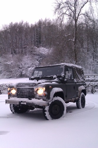 Trusty Steed in the Snow