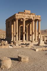 Palmyra XXIX: Around the Temple of Baal-Shamin. (egisto.sani) Tags: roman romano empire arabia di syria provincia palmyra palmira baal siria impero temple tempio baalshamin