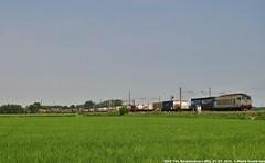 E652 145 (MattiaDeambrogio) Tags: train merci trains terminal cargo treno tigre timo trenitalia treni mortara e652 xmpr borgolavezzaro