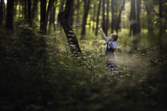 Playing with the Trees (Phillip Haumesser Photography) Tags: boy kid child woods trees fun playing childhood philliphaumesser