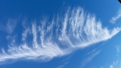 Feather in the Sky (richwall100 - Thank you for Two Million views) Tags: clouds cirrus sky feather skyscape