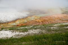DSC02966 (pezlud) Tags: yellowstone nationalpark landscape geyserbasin grandprismaticspring midwaygeyserbasin geyser park