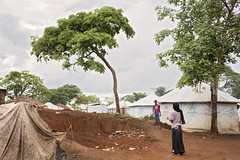 UN Women Humanitarian Work with Refugees in Cameroon (UN Women Gallery) Tags: unwomen planet5050 genderequality empowerment cameroon humanitarian refugee centralafricanrepublic economicempowerment wps 1325 onufemmes cameroun widow resilience courage strength breadwinner market vendor business entrepeneur