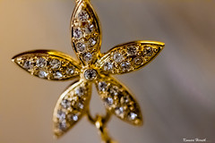 Golden Star (kumherath) Tags: macromondays stars ef100mmf28lmacroisusm canon600d stones gold pendant