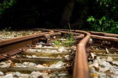 Tracks (D1g1tal Eye) Tags: rails train iron disused neglected depthoffield nikon d7000 50mm f18d
