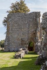 Bayham Abbey 28 (mini-b) Tags: bayhamabbey ruins englishheritage 13th15thcentury frant eastsussex canon eos5dmkii ef28300mm3556lisusm 2016