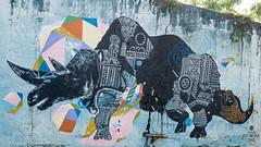 _DSC5968 (Mario C Bucci) Tags: saida fotografia pacheco paulo tellis mario bucci hugo shiraga fabio sideny roland grafites volu ii