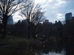 winter light (amysh) Tags: centralpark sky trees lateafternoons skyline newyork newyorkcity ny nyc olympuse420