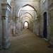 Aisle, Abbaye de Fontenay