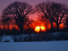 sunset (Hans-Jrgen Bckmann) Tags: schnee winter sunset sun sonnenuntergang sonne 2012