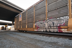 DWOT (TRUE 2 DEATH) Tags: railroad art train graffiti tag graf ant traintracks trains railcar unionpacific boxcar railways railfan freight freighttrain autorack benching freighttraingraffiti allnation dwot autoraxxx