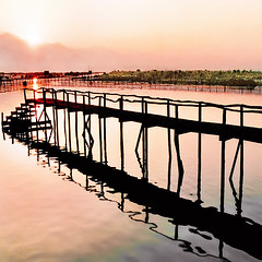 Wish You Were Here (fifich@t - (sick) 2016 = Annus Horribilis) Tags: pink silhouette sunrise asia pastel burma pinkfloyd myanmar inlelake serene magical woodenbridge nikonf80 pasteltones fujivelvia birmanie 500x500 nikkor28105 squarepicture newyearwishes lacinl bestcapturesaoi magicunicorntheverybest magicunicornmasterpieces minimalscape featuredfrontpagewinners fifichat1 digimarc2012 frs squarefotografiasparaenmarcar1005 allrightsreservedfrs welovedasiasomuch rememberingthehappydays fificht frs