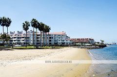 Coronado Island, San Diego (Naomi Rahim (thanks for 3 million visits)) Tags: california ca travel usa beach america sandiego palmtrees socal coronado coronadoisland naomirahim