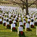Arlington National Cemetery_9