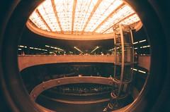 #357 ([ iany trisuzzi ]) Tags: film analog 35mm toycamera fisheye fisheye2 project365 365days redscale selfmaderedscale