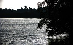 Madampe Lake - By Dimuth Weerasekera (Dimuth Weerasekera) Tags: lake canon river is district south southern sri lanka ceylon galle s5 ambalangoda dimuth weerasekera s5is madampe