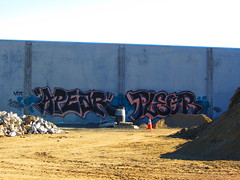 Apear Plegr (VDub (o\I/o)) Tags: sf sanfrancisco california art graffiti tags mta spraypaint graff aerosol tagging sufer siez ruk apear plegr