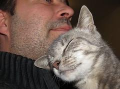 True Love (JourneySX30) Tags: love cat kat human mens liefde between tussen