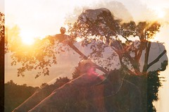 (christina stoever) Tags: sunset summer sun film field analog overlay ektar