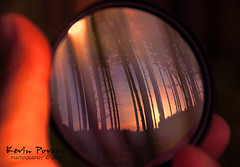 Happy New Years!!  -  Explore (Kevin Povenz) Tags: new trees sunset sky reflection happy kevin hand newyearseve thumb years hold 2012 2013 povenz