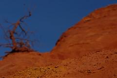 Ocres du Colorado provençal (Michel Seguret Thanks for 11,8 M views !!!) Tags: france colors yellow jaune nikon colorado colorful couleurs amarillo gelb pro geology d200 provence couleur ocre vaucluse smörgåsbord ocher geologie rustrel ocres ocra ocker ochers coloradoprovençal dragongoldaward michelseguret