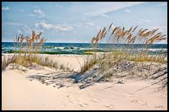 Visit Perdido Key (grandalloliver) Tags: summer vacation beach canon landscape florida pensacola perdido topaz perdidokey canonefs1755mmf28usm rebelxsi canonxsi topazadjust grandalloliver grandalloliverphoto