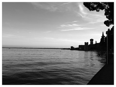 (mooohr) Tags: trees bw lake silhouette alberi lago garda sirmione uploaded:by=flickrmobile flickriosapp:filter=panda pandafilter