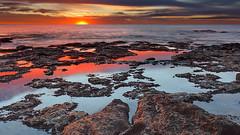 42-31293818 (NMPUC) Tags: ocean morning sea seascape color reflection latinamerica southamerica nature water argentina beauty rock sunrise outdoors tide nobody shore serenity daytime lowtide shallow idyllic tidepool atlanticocean miramar equinox foreshore rockformation beautyinnature horizonoverwater marinescene