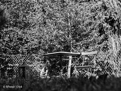 sommer dream (R-Pe) Tags: life blue red white black rot eye art robert water coffee caf smile face breakfast night train canon square photo essen gesicht wasser noir day foto mask nacht live tag fine wiese kaffee zug security ferrari bleu peter hut trainstation rosen blau augen lachen trinken bahn wald schwarz chai figur acryl leben maske pastell masken ingwer larve blaw bahnstation 1764 tschai rpe rbi 1764org